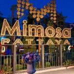 Торговый Центр Mimosa