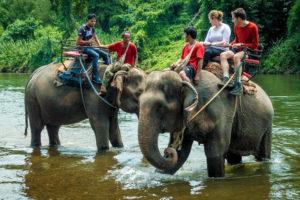 Деревня слонов на реке Квай