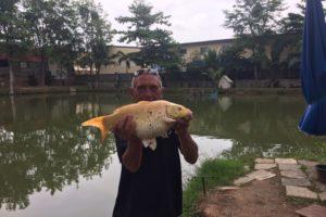 Озерная рабалка в Паттайе