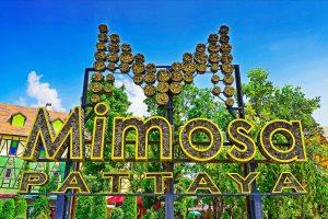 Парк развлечений Мимоза