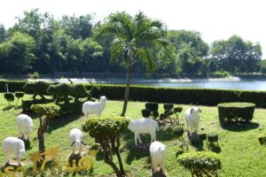 Фруктовая плантация Suphattra Land