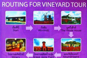 SilverLake Vineyard & Winery