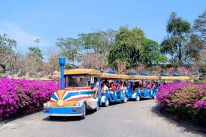 Катание на паровозике по парку в Паттайе