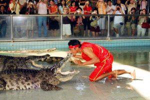 Шоу крокодилов в Паттайе