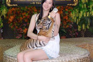 Фото на память с тигренком