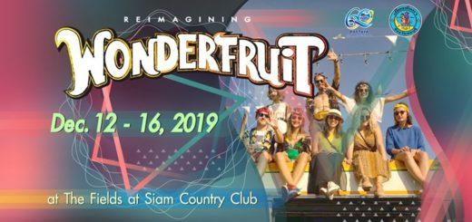 Музыкальный фестиваль Wonderfruit Festival
